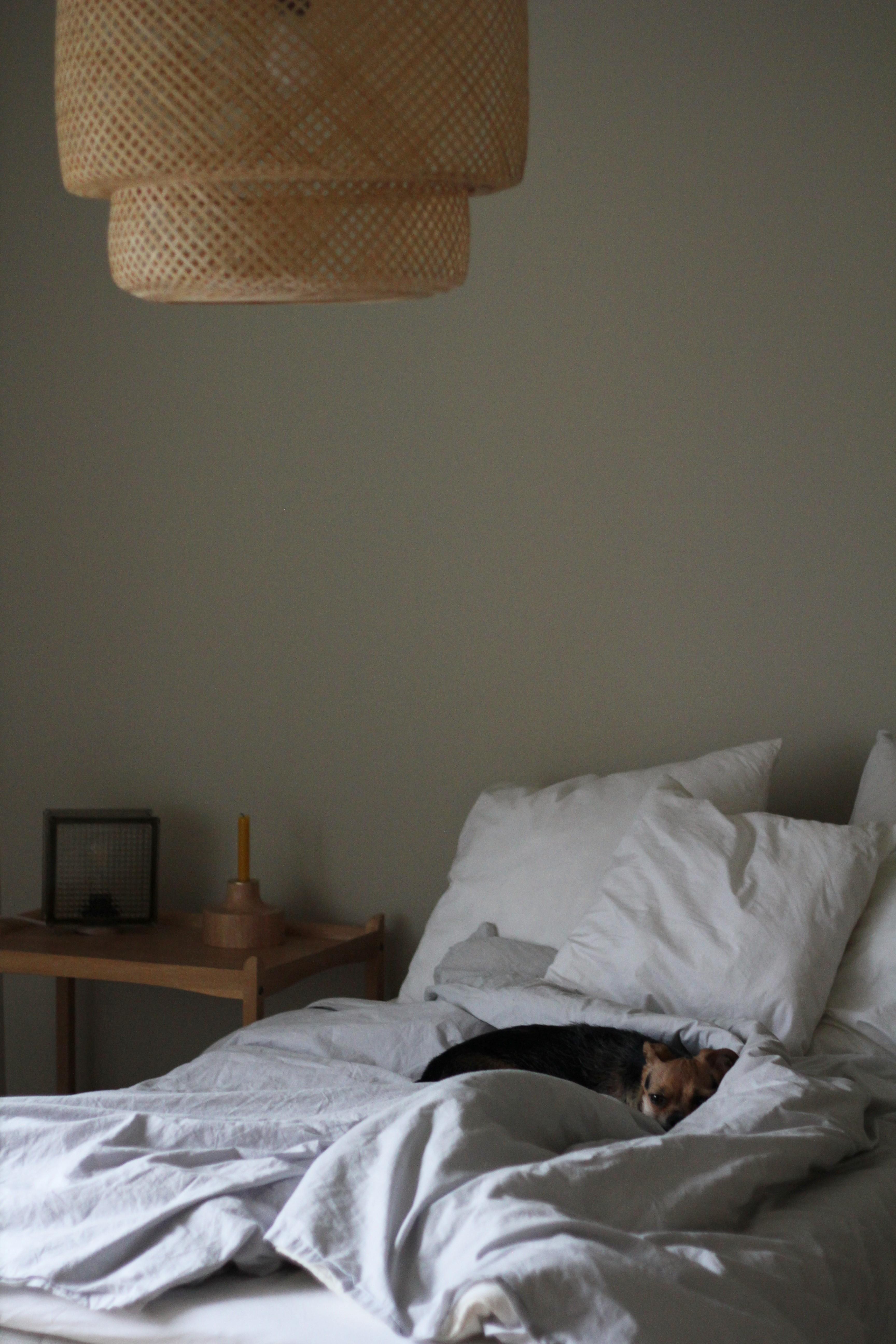 Ikean valtava Sinnerlig-valaisin toimii matalassa huoneessa, kun se alta ei tarvitse kävellä.